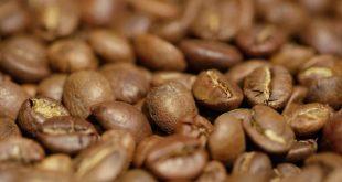 فروش قهوه دانه درشت