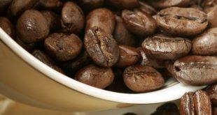 عرضه قهوه فله برزیلی