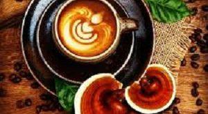 قهوه قارچ گانودرما