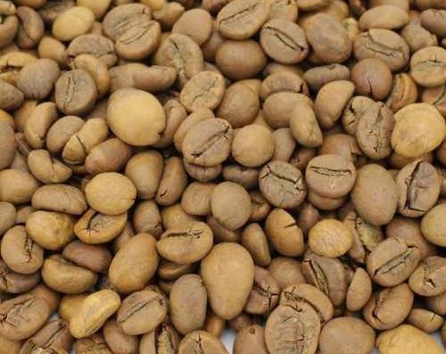 قیمت عمده قهوه چری