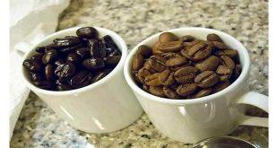 واردات قهوه خام مرغوب