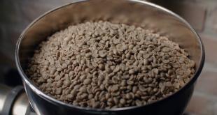 قهوه سبز عربیکا