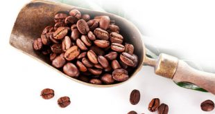 فروش قهوه جاوه