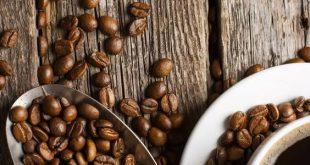 واردات دانه قهوه خام ارزان