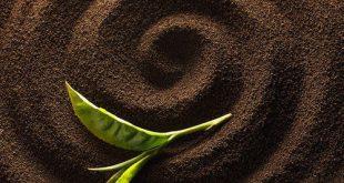خرید پودر قهوه ترک برزیل