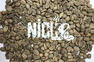 بازار قهوه سبز عمده