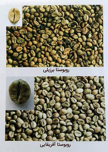 خریدانواع قهوه سبز